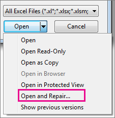 From the Open drop down menu, select Open and Repair