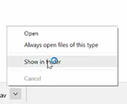 "Click to expand the file download option menu > select ""Show in folder"""